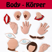 German Vocabulary – All about the Body Part 2