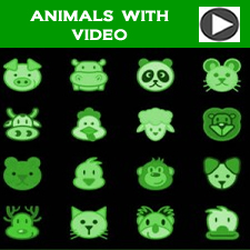 Video with Questions 13/09/12 - Animals around the World