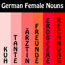 German Feminine Nouns