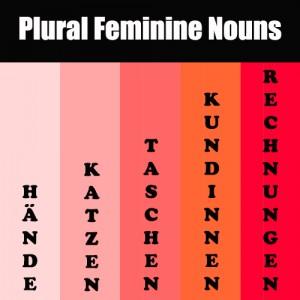 Plural Feminine Nouns