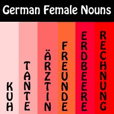 German Feminine Nouns